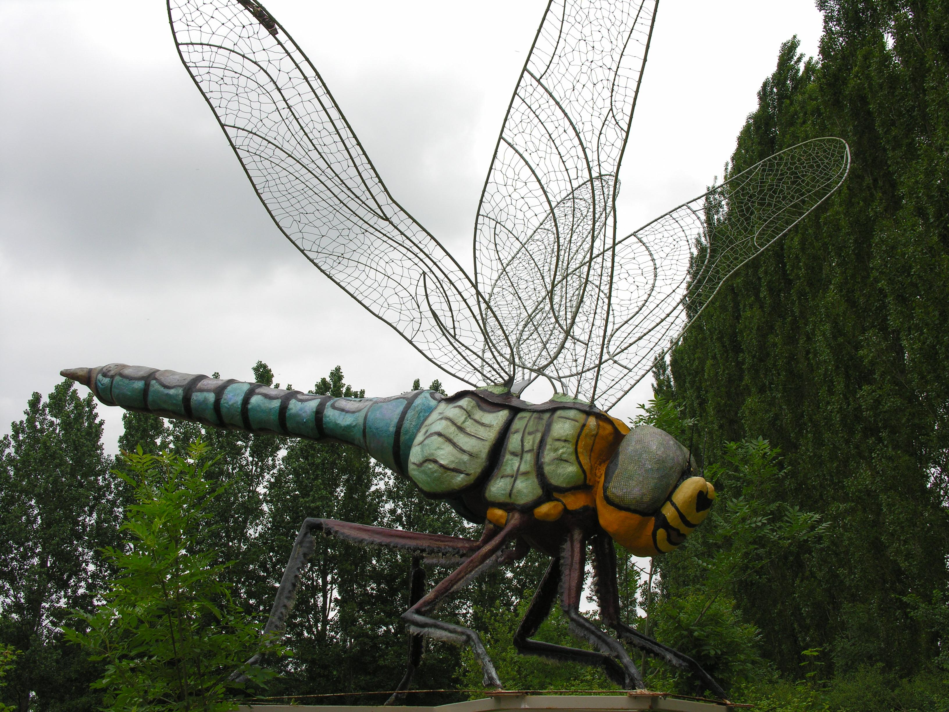 L'énorme libellule, œuvre collective d'une quarantaine de personnes, de tout âge et tout milieu, qui accueillait les visiteurs.